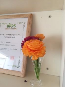 広島市 東区 D・Uコダ 建設会社 住宅 建築 店舗 リフォーム 事務所 お花